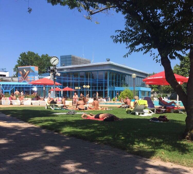 https://forrofestival.com/wp-content/uploads/2016/11/SwimmingPool-Das-Leuze-Mineralbad.jpg
